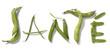santé written with green vegetables