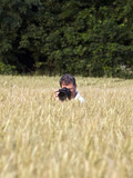 fotographer in corn field with camera