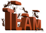 ant teamwork team building cooperation poster