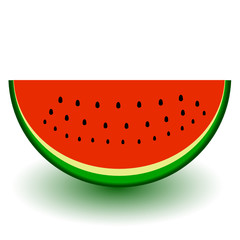 a piece of watermelon vector illustration