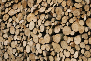 Holzstapel, Holz