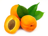 Fototapety Fresh apricots on white background