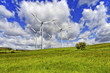 Green pasture and wind turbines farm