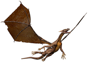 dragon take a flyght
