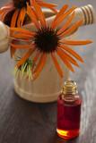 echinacea alternative medicine poster