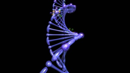 DNA_creation