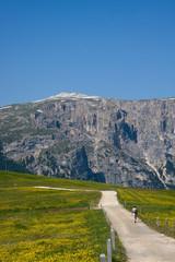 Altopiano dell'alpe di Siusi Dolomiti