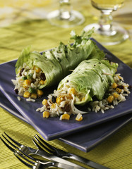 surprice iceberg lettuce rolls