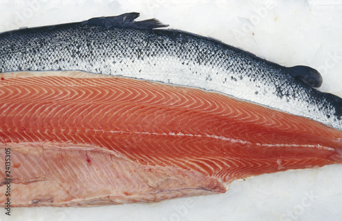 raw norwegian salmon
