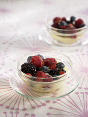 custard with summer fruit