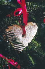 heart-shaped shortbread cookie hanging on the christmas tree