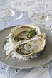 festive oysters with herb sauce