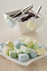 marshmallows for a chocolate fondue