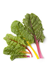 Different colored chard leaves