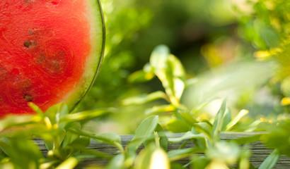 Saftige Wassermelone zwischen grünen Blättern