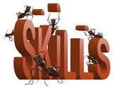 building skills poster