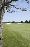 Golf Fairway and Green poster
