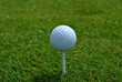 white golf ball on a tee