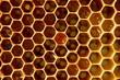 Plaster pszczeli z miodem