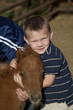 young boy hugging baby horse