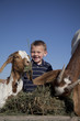 young boy with goats eating