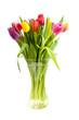 bouquet of Dutch tulips in vase over white background