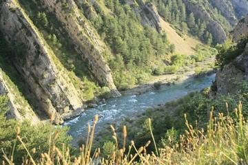 rio ara en pirineos