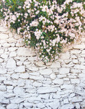 White-washed walls of rough stone with a flowers on top
