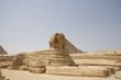 Quadro Sphinx