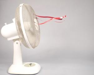 Fan, profile