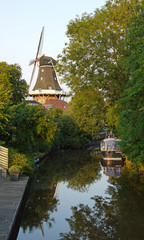 Moulin et canaux Hollandais