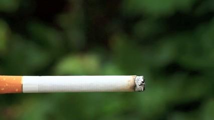 burning cigarette I/ Video