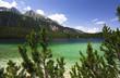 tovel lake landscape