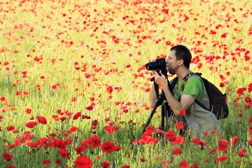 Photographer in poppy field