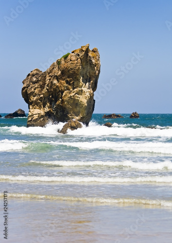 Gran Roca en la playa Poster