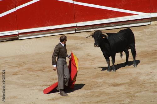 Staande foto Festival taurino sanfemines, 13 de julio de 2010, Pamplona.
