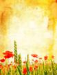Винтажные фоны для Фотошопа - Природа Vintage backgrounds - Nature...