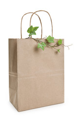 Brown paper shopping bag and plant