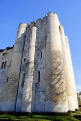 Donjon de Niort, Deux-Sèvres # 11