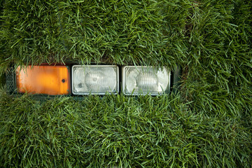 Grass Bus Lights