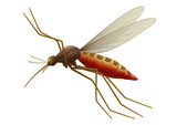 Vector Mosquito - Insect. Full compatible - gradients.
