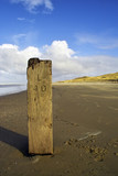 Wooden pole on the beach