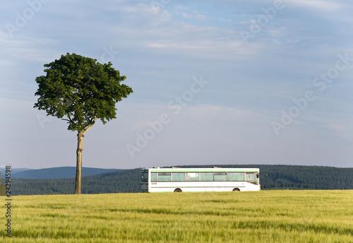 Bus fährt auf Landstraße an Baum vorbei - 24294598