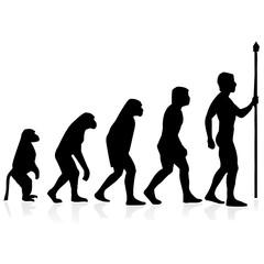 human evolution.Vector