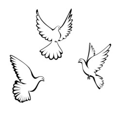 Three dove
