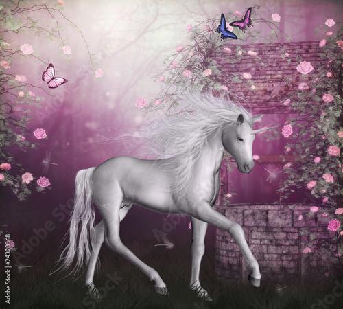 Fototapeten,einhorn,grau,pferd,weiß