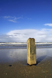 Wooden pole with the tide going out
