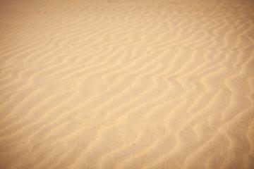 Rippled sand texture
