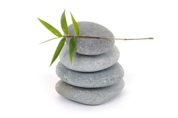 Bamboo leaf on gray stones