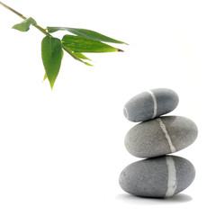 bamboo leaves with zen stone